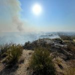 El incendio de Valtierra ha quemado buena parte del Vedado de Eguaras de las Bardenas